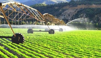 Canadian Agricultural Partnership Ontario Grants for Food Producers