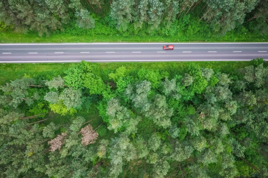 aerial-and-symmetric-view-of-a-road-in-the-woods-picjumbo-com