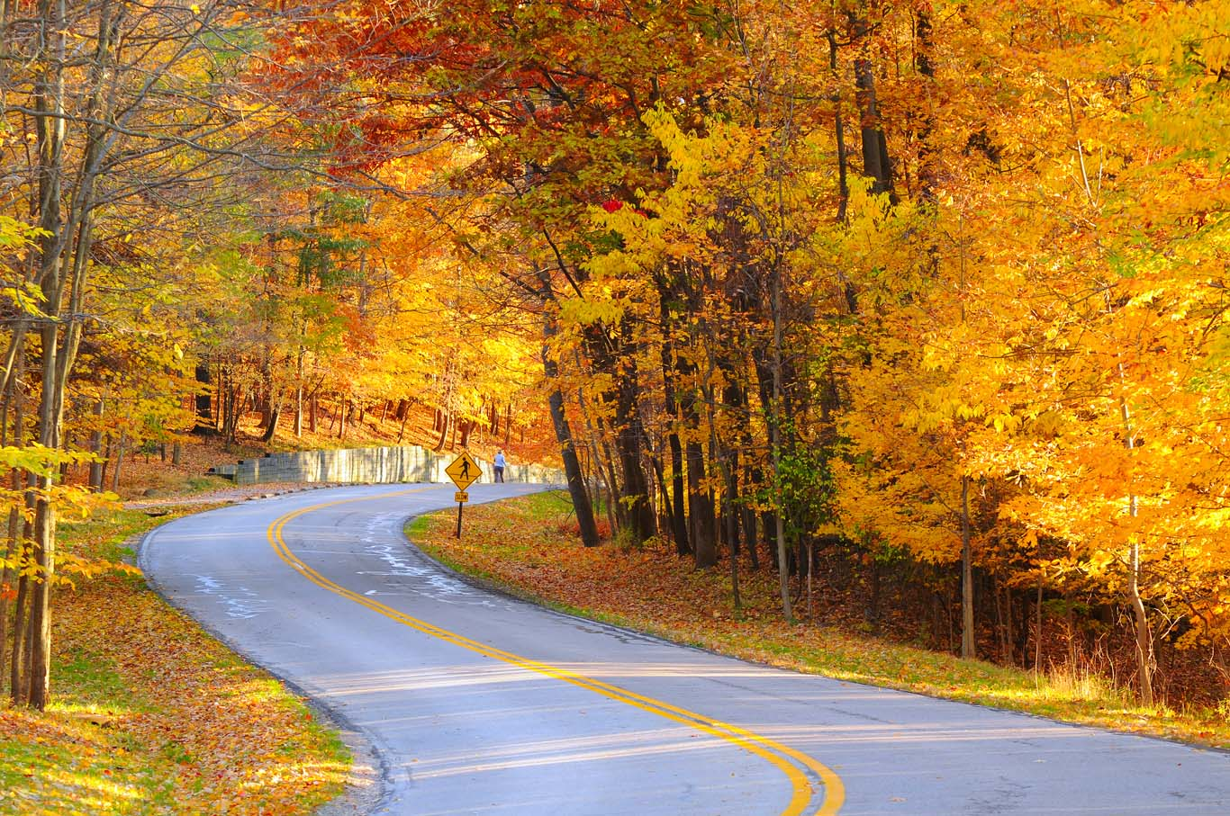 A curving autumn road with a hiker in the far distance